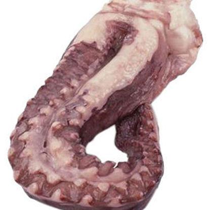 Imagem de Tentáculos Pota Cong Avulso kg (emb 500GR aprox)