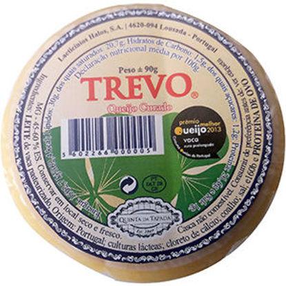 Picture of Queijo TREVO Curado 90gr