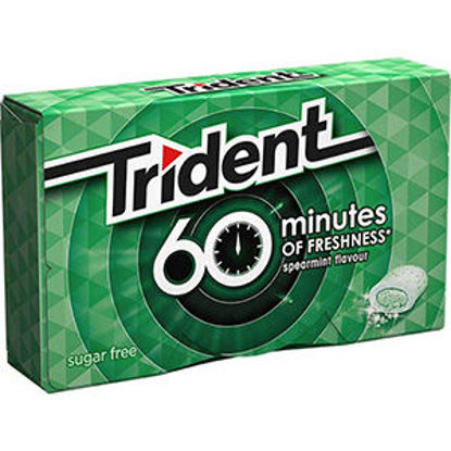 Picture of Past TRIDENT 60 Minutes Spearmint 20gr