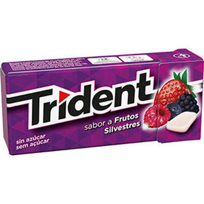Picture of Past TRIDENT Frutos Silvestres 14,5gr