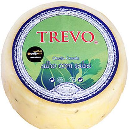 Picture of Queijo TREVO Curado Prato C/ Alho Salsa 600gr