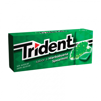 Picture of Past TRIDENT Fresh Spearmint 14,5gr