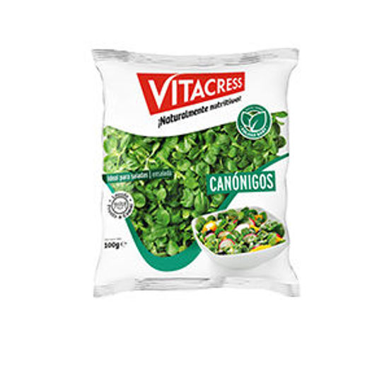 Picture of Canonigos VITACRESS 100gr